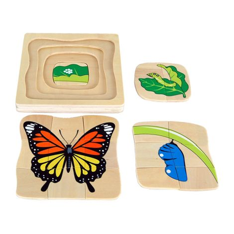 Butterfly Life-Cycle Puzzle