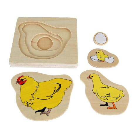Chicken Life-Cycle Puzzle