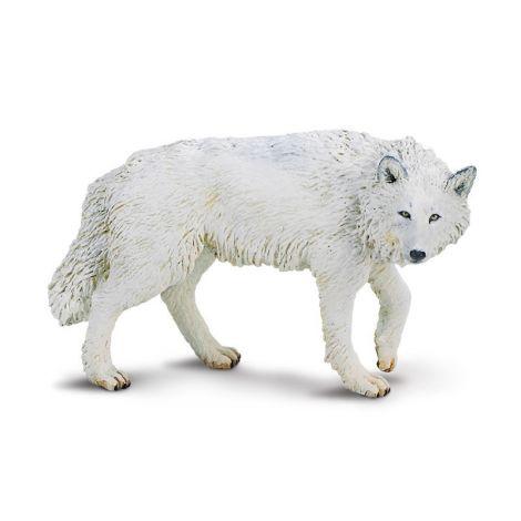 Wild Forest White Wolf