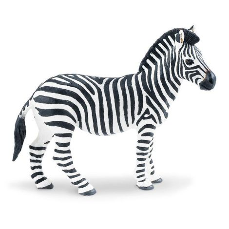 Wild Jungle Plains Zebra