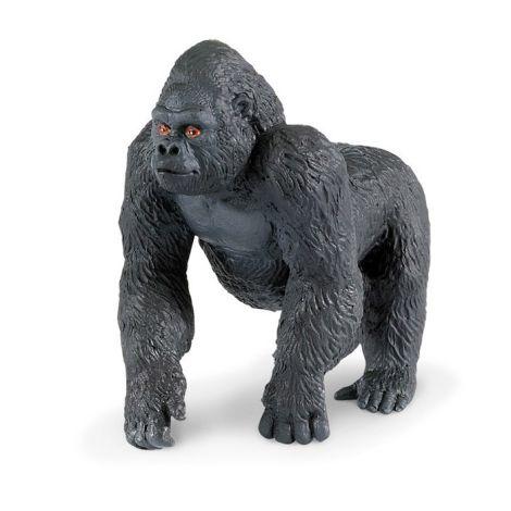 Wild Jungle Gorilla